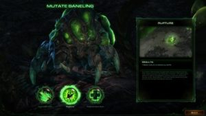 StarCraft II: Heart of the Swarm battlenet