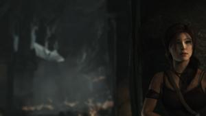 Tomb Raider steam